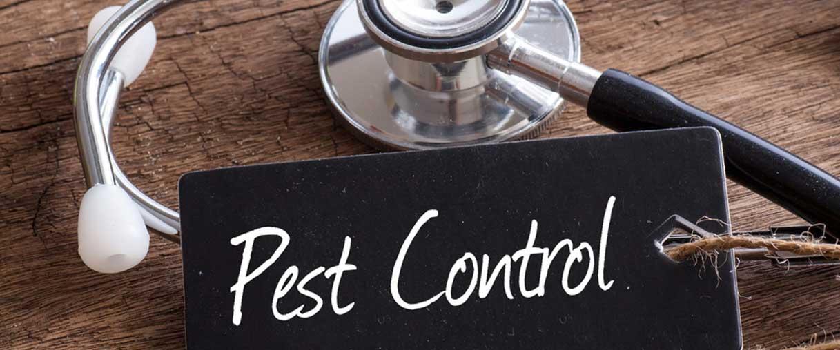 pest kontrol firmalari-pest kontrol sirketleri, pest kontrol nedir
