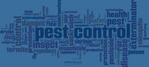 pest kontrol firmalari-pest kontrol sirketleri